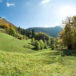 Séjour estival dans les Montagnes du Jura